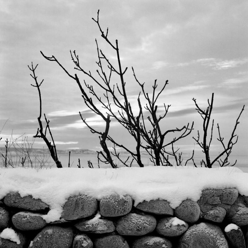 06herve-gergaud2011-01-15